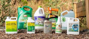 10 Best Weed Killers For Weeding Out Unwanted Guests