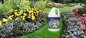 Best Weed Killer For Flower Beds: The Ultimate Guide