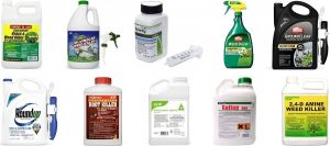 Top 7 Strongest Weed Killers For A Cleaner Lawn