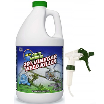 Green Gobbler Vinegar Weed & Grass Killer
