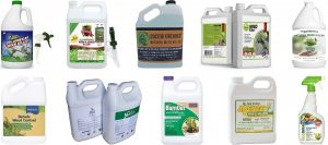 Best Organic Weed Killer: Top 10 Safest Products To Keep Your Areas Weed-Free