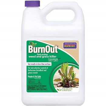 Bonide (BND7465) - Burnout Concentrate, Fast Acting Weed and Grass Killer