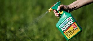 Step By Step Lawn Maintenance: Best Time To Spray Weed Killer