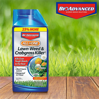 BioAdvanced 704140 Crabgrass Killer