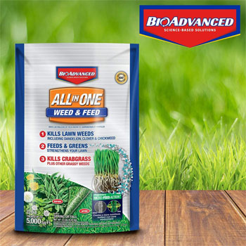 BioAdvanced All-In-One Weed & Feed With Microfeed Action