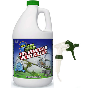 Green Gobbler Vinegar Weed And Grass Killer