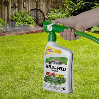 Spectracide Weed & Feed 20-0-0, Ready-To-Spray