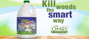 Green Gobbler Vinegar Weed & Grass Killer Review: Going Vegan and Cleaning Weeds in My Lawn