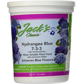 Jack's Classic Hydrangea Blue