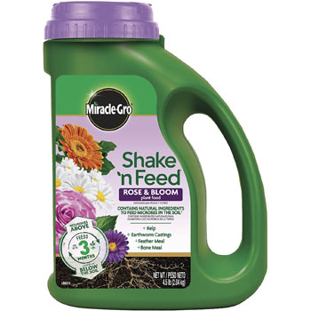 Miracle-Gro Shake 'N Feed Rose & Bloom Plant Food