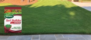 Best Fertilizer for Bermuda Grass: Make the Bermuda Grass Glow and Grow